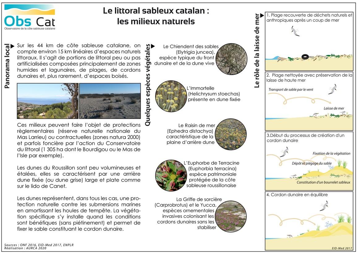 WEB_littoral sableux catalan_les milieux naturels_2020